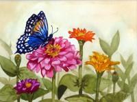 Butterfly Garden #2 - Red Spotted Purple