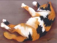 Calico Cat - Pastel