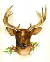 Deer & Holly