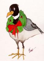 Gooney Gull Christmas