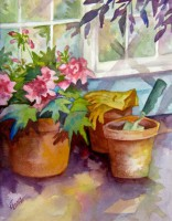 In the Shade of the Potting shed