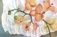 Orchids & Eyelet