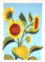 Sunflower Poster Girls