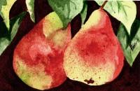 Terri's Pears